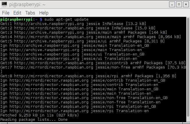 Raspbian Update via Terminal